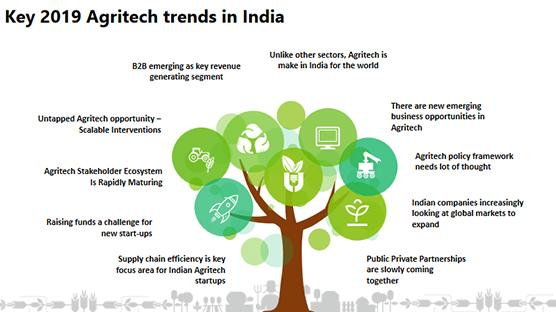Emerging Trends in Indian Agriculture